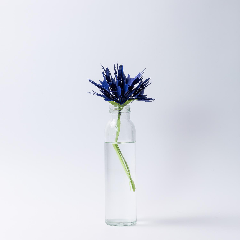 日本原产mikuni不插电便携式加湿器 一支独秀 蓝色 蓝色